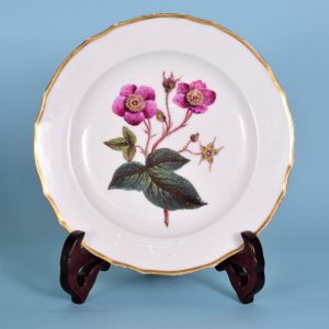Derby Botanical Plate