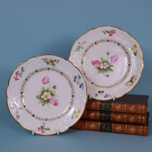 Pair of Swansea Porcelain Plates