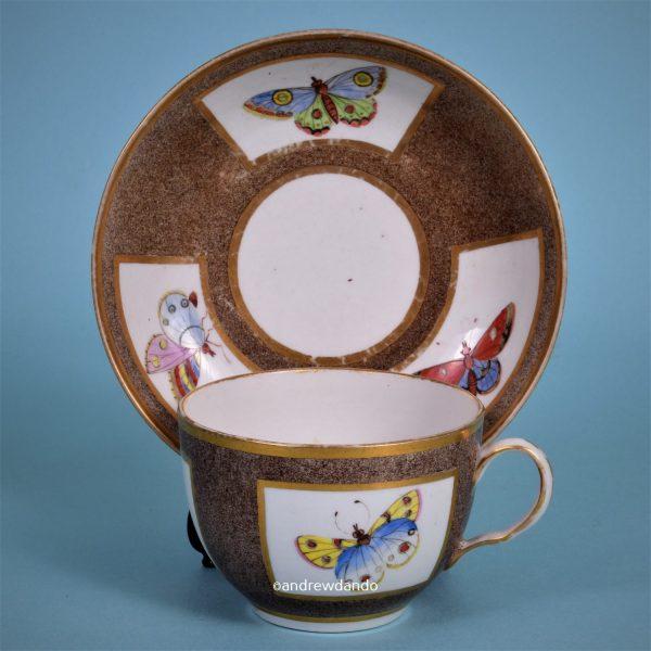 Coalport 'Moth' Decorated Tea Cup & Saucer.