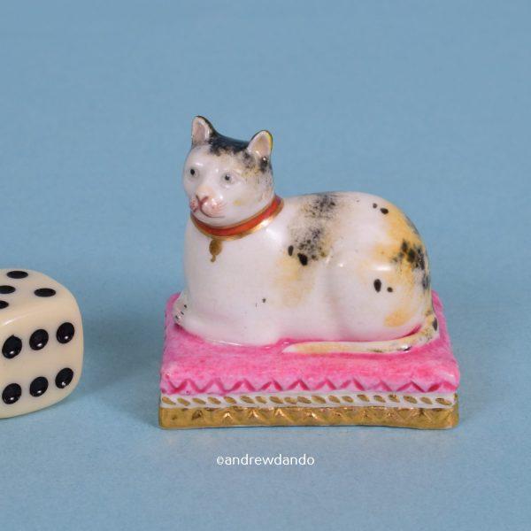 Miniature Derby cat.