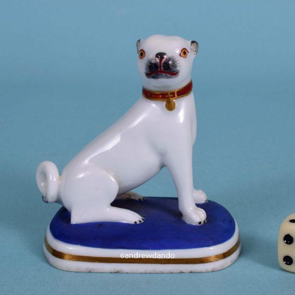 Chamberlains Worcester Pug Dog