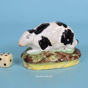 Staffordshire Miniature Rabbit.