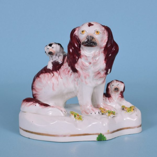 Staffordshire Spaniel with Puppies