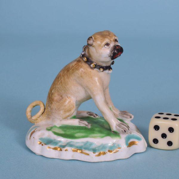 Derby Pug Dog