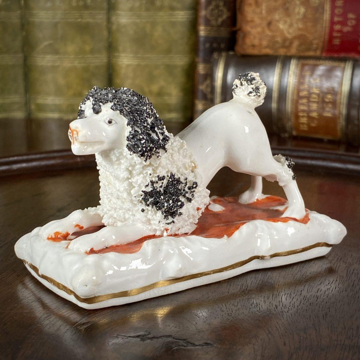 C19th Staffordshire Porcelain Bi-Coloured Poodle, Crouching.
